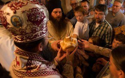 Свети врачи Козма и Дамјан прослављени у Букову