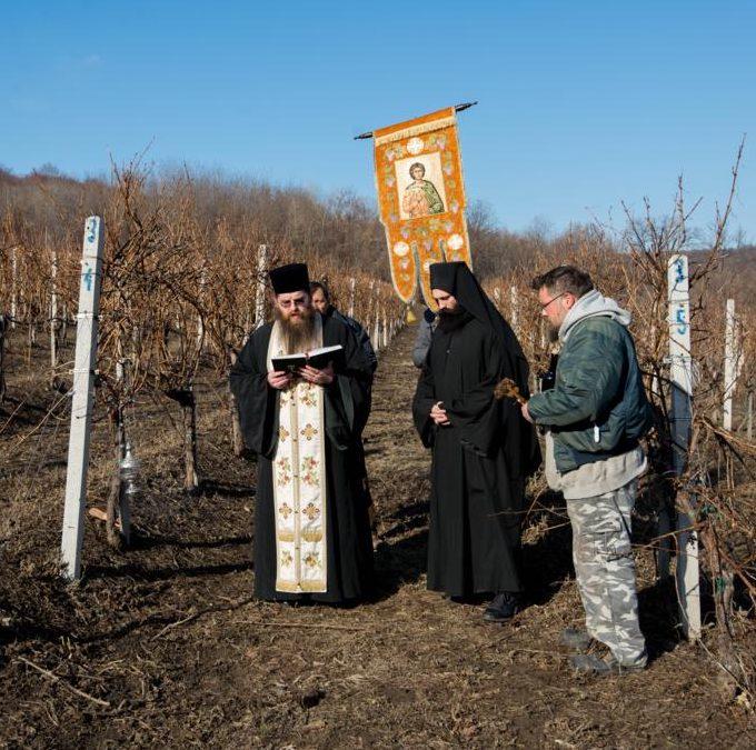 Свети Трифун – виноградарска слава